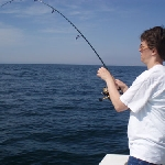 MaddowFish2